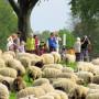 www.koeln-deutz-extra.de